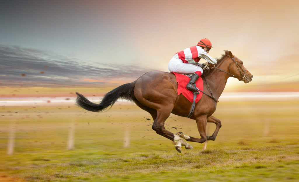 Here Are 26 Racehorse Names That are Epic and Weird – Again, we have to ask, where do people come up with these names? Enjoy!