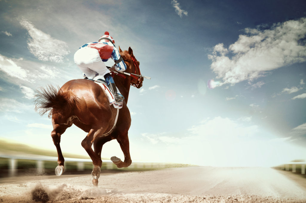Here Are 26 Racehorse Names That are Epic and Weird: