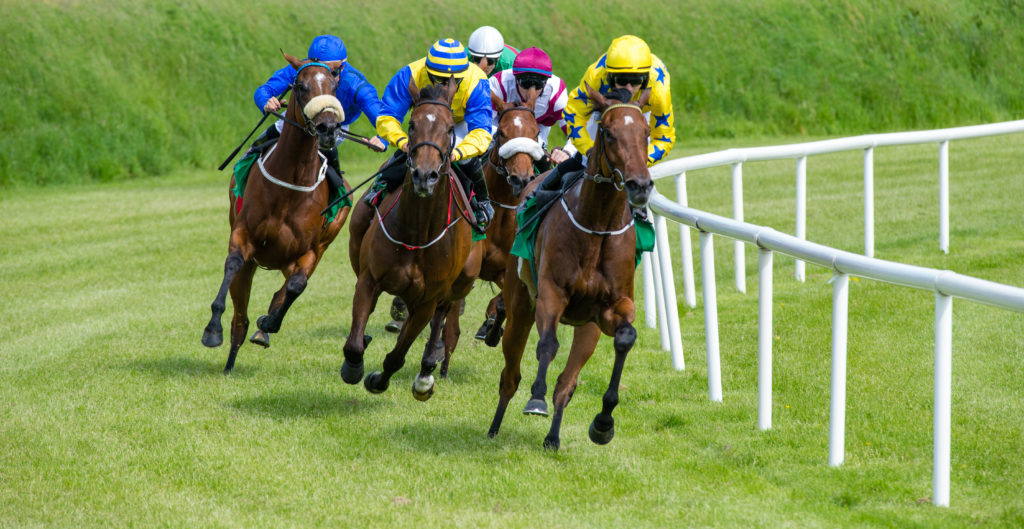 The Top 25 Fastest and Best Racehorses In 2021