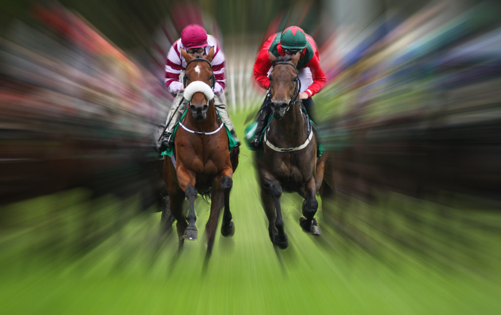 The Top 25 Fastest Racehorses In 2021