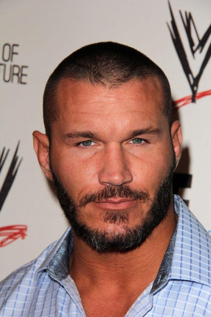 20 WWE Finisher Moves