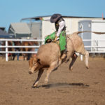 Amadeu Campos Silva Tragically Passes Away at 22 From Unexpected Bull Riding Accident